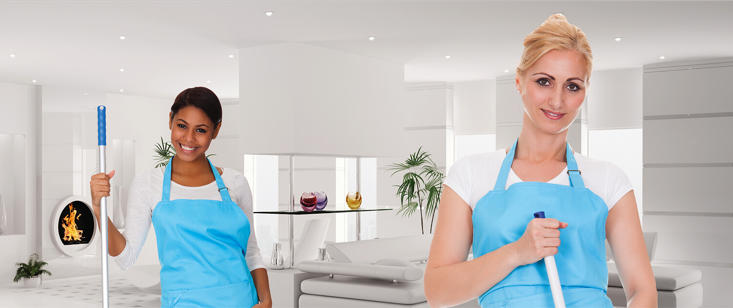 Professional Cleaning Services – Blue Maid